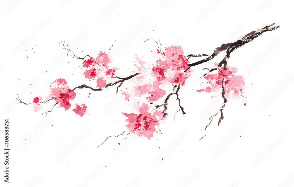 Fototapety, obrazy: Sakura branch. Original watercolor painting.