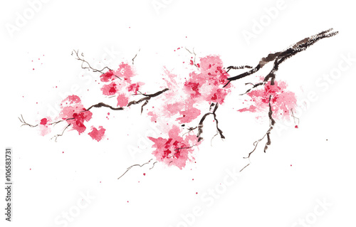 Tableau sur Toile Sakura branch. Original watercolor painting.