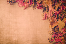 Vintage Backdrop Image With Dried Flower Potpourri And Textured Background.  Room For Copy.