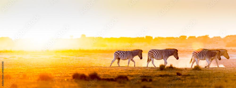 Fototapety, obrazy: Africa Sunset Landscape