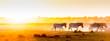 canvas print picture - Africa Sunset Landscape