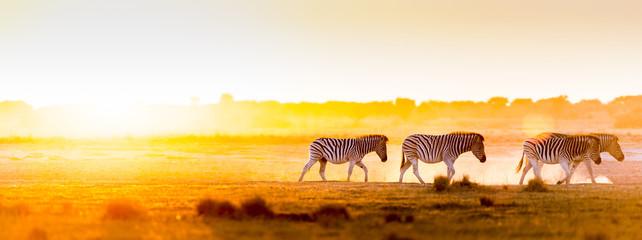 Fototapeta na wymiar Africa Sunset Landscape