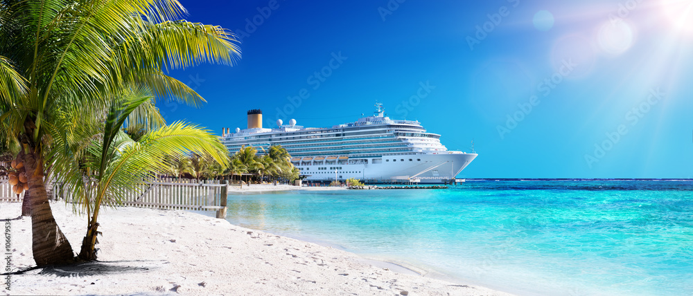 Fototapeta Cruise To Caribbean With Palm tree On Coral Beach