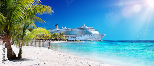Stampa su Tela Cruise To Caribbean With Palm tree On Coral Beach