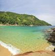 beautiful tropical beach with green water