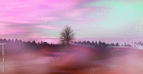 Staande foto Purper Beautiful colorful natural landscape