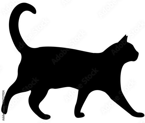 Tableau sur Toile cat silhouette vector