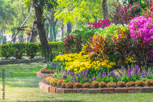Foto op Aluminium Geel Flowers in the garden on summer. /Landscaped flower garden with lots of colorful blooms on summer.