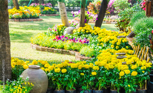 Papiers peints Jardin Flowers in the garden on summer. /Landscaped flower garden with lots of colorful blooms on summer.