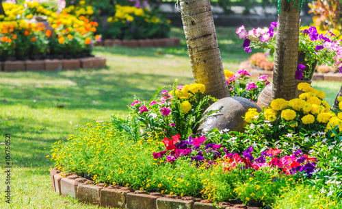 Poster Jaune Flowers in the garden on summer. /Landscaped flower garden with lots of colorful blooms on summer.
