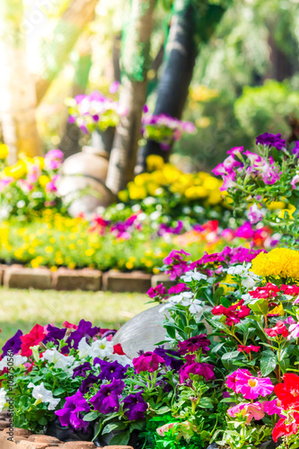 Poster Jaune Flowers in the garden./ Landscaped flower garden with lots of colorful blooms with sun flare.