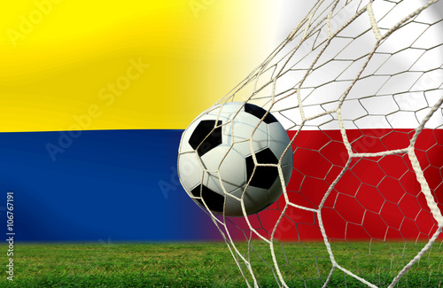 Photo  Soccer Euro 2016 ( Football )  Ukraine and Poland