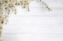 Spring Background. Fruit Flowe...