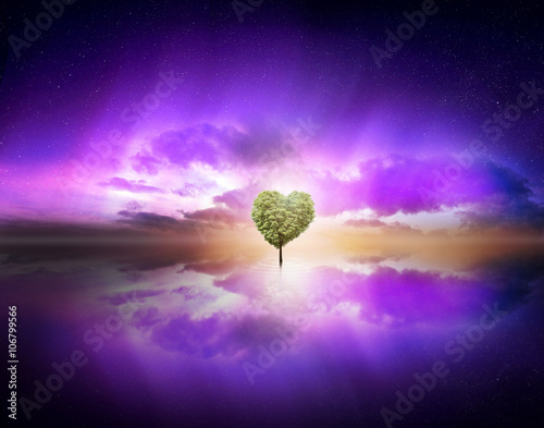 Keuken foto achterwand Violet love tree in purple sky