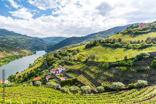 Fotografie, Obraz  Landscape of the Douro river regionin Portugal -  Vineyards