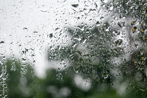 Staande foto Paardebloemen en water The rain of mirror
