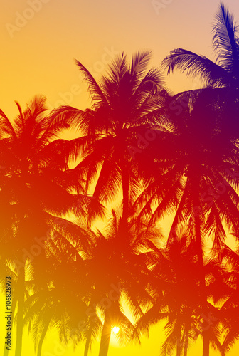 Poster Tropical beach coconuts silhouettes with tropical sunset
