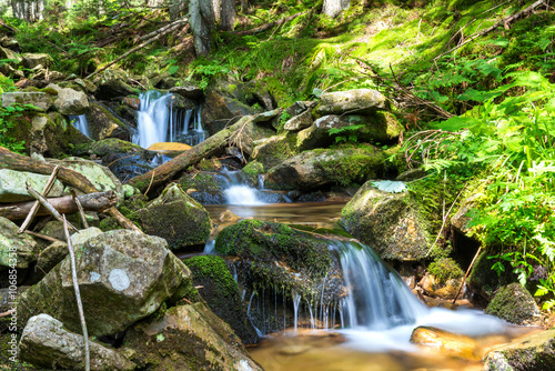 Foto op Aluminium Bergen Waterfall in the forest
