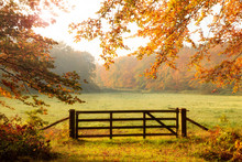 Wooden Gate To A Meadow With S...