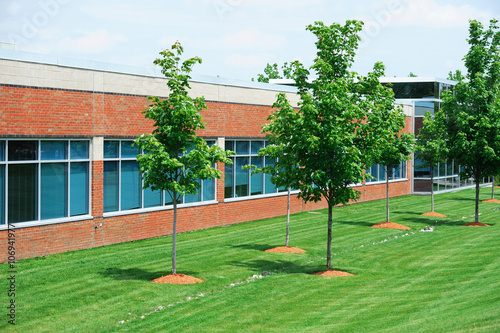 Staande foto Industrial geb. industrial building exterior and green tree in spring