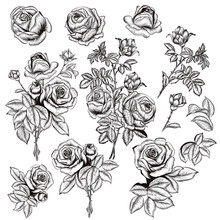 Collection Of Vector Hand Draw...