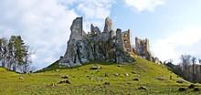 Ruins Of Castle Hrušov