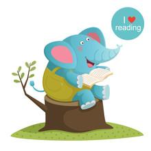 Cartoon Elephant Reading A Book