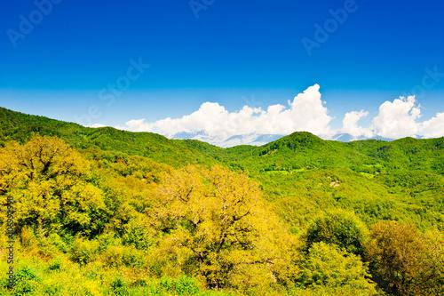 Fotografie, Obraz  Beautiful landscape, summer in mountains