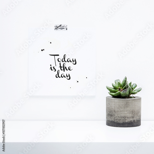 TODAY IS THE DAY. Succulent in concrete planter. Modern home.