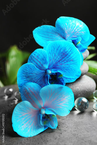 Naklejka na szybę Beautiful spa composition with blue orchid and stones