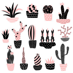 Panel Szklanypink cacti 2 in pots