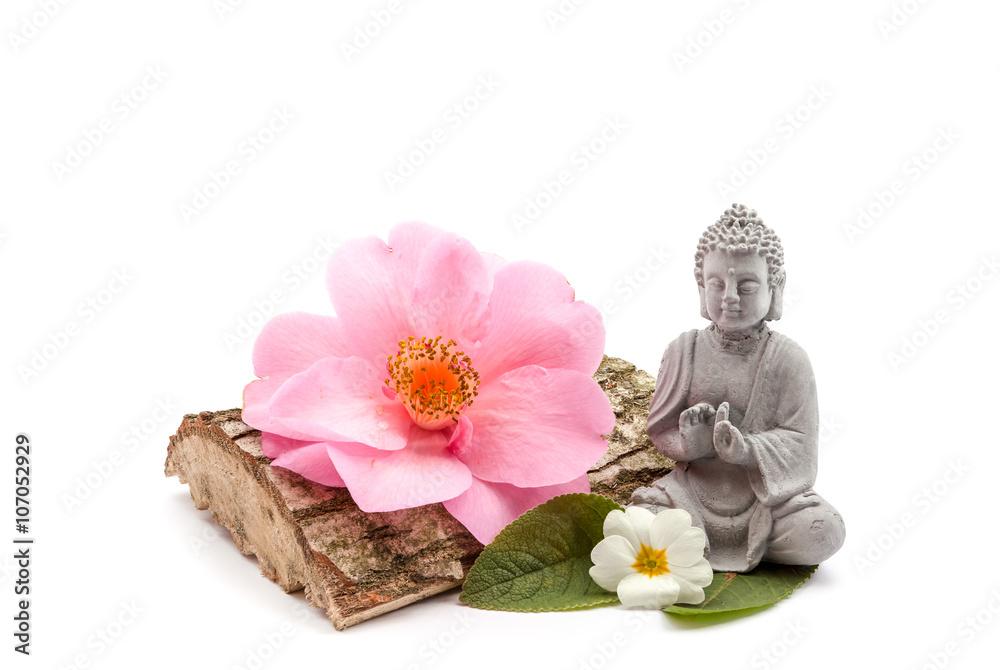 Stones and trunk whit flower and Buddha Fototapeta