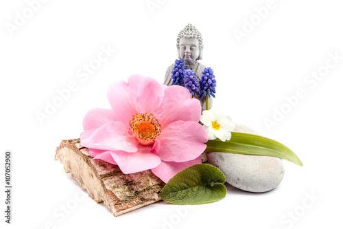Fotografija  Stones and trunk whit flower and Buddha