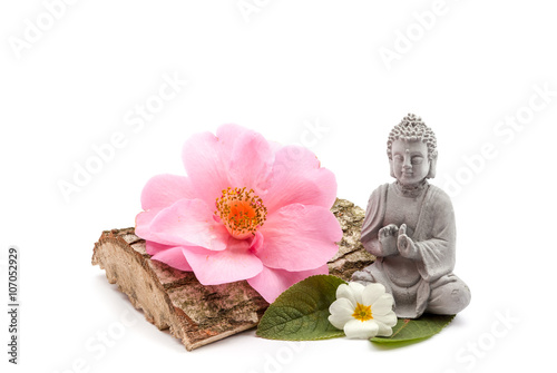 Fotografering  Stones and trunk whit flower and Buddha