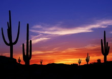 Colorful Sunset In Wild West D...