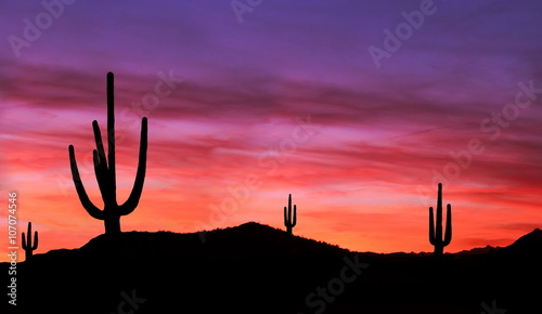 Colorful Sunset in Wild West Desert of Arizona with Cactus