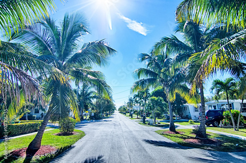 fototapeta na lodówkę way to the beach with palm trees in key west florida