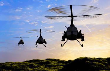 FototapetaThe helicopters