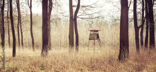 Photo sur Aluminium Chasse wooden hide in leafy green forest
