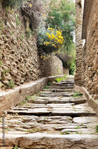 Fototapeta Aleja z kamiennymi schodami w korsykańskiej wiosce ścienna