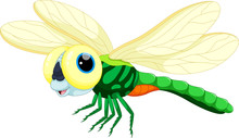 Cute Dragonfly Cartoon