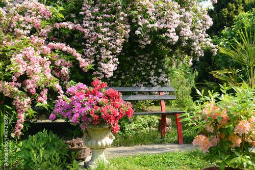 Foto  Garten 579