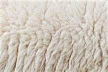 Wool From Sheep Closeup Backgr...