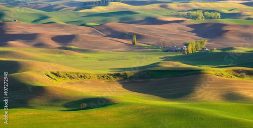 Fotobehang Heuvel Sunset view of the farm in the rolling hills farmland. Palouse Hills in Washington, United State of America.