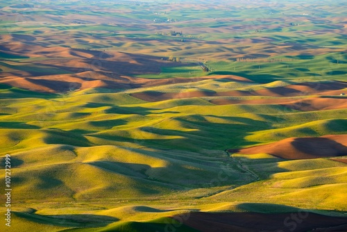 Foto auf Gartenposter Hugel The rolling hills farmland at sunset. Palouse Hills in Washington, United State of America.