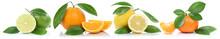 Collage Orangen Zitrone Mandarine Früchte In Einer Reihe Freist