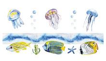 Watercolor Fish, Jellyfish.