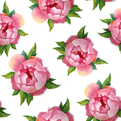 Fototapeta Peonies watercolor pattern. Illustration