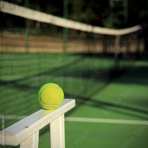 Tennis ball with net background Poster