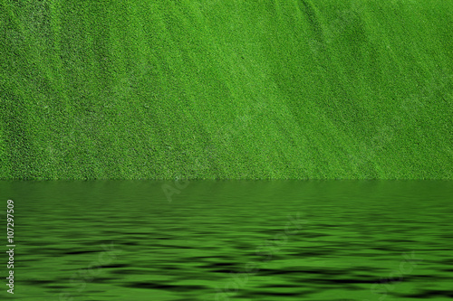 Poster Green Grass background texture with water